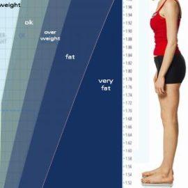 Калькулятор веса или Расчет идеального веса для всех, кто хочет знать «сколько я должен весить».